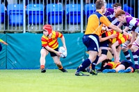 Temple Carrig v Clongowes